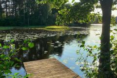 Det er alltid like idyllisk i Løken, men spesielt på sommerdagene er det flott å spasere rundt her.